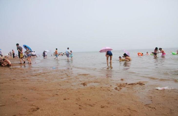 天津海滨旅游度假区位于天津市塘沽区高沙岭东面,又叫做海滨浴场,是