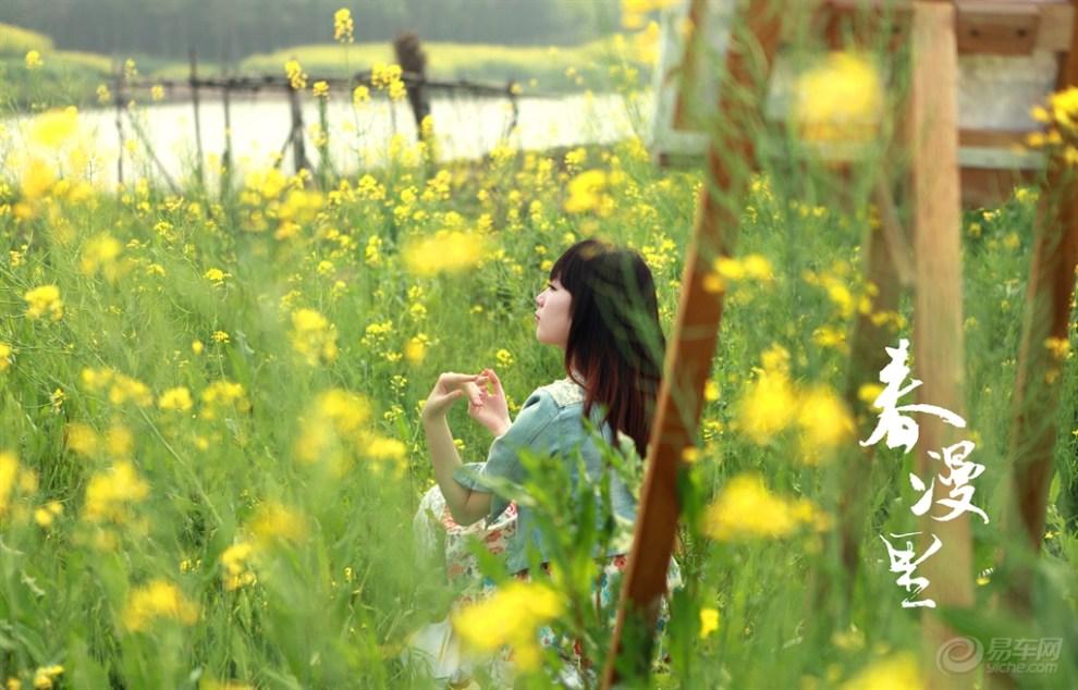 【春漫里--油菜花丽人长发美女春风】_油画海丰美女图片图片