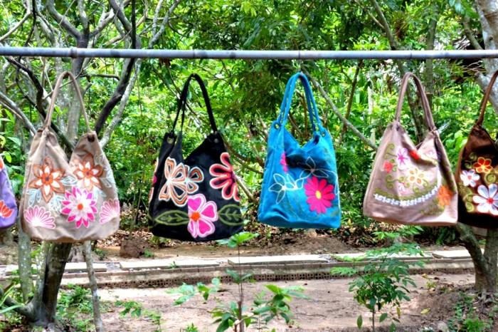 登越南美托泰山岛,赏湄公河,品热带水果(三)
