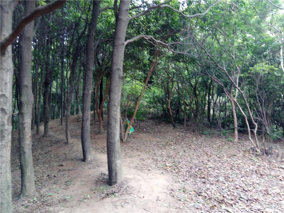 梅岭风景区之新四坡 ,乌井水库