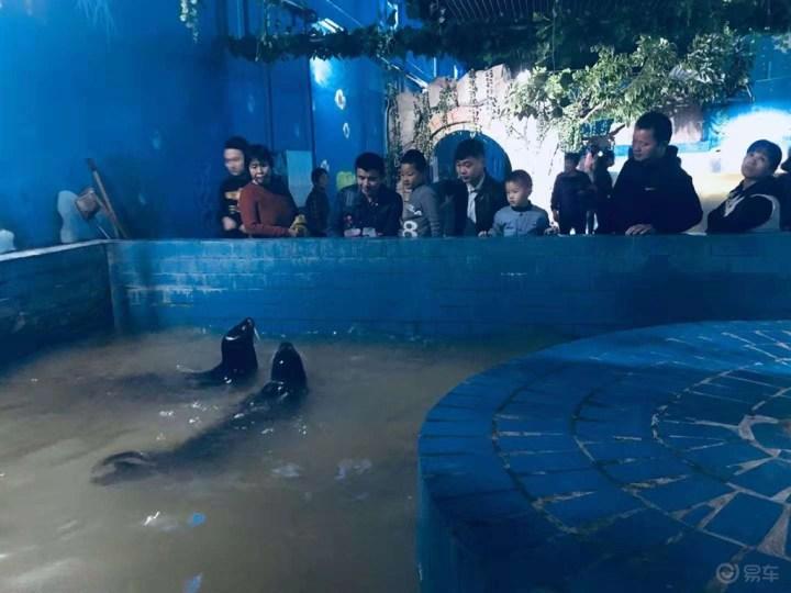聊城野生动物园一日游