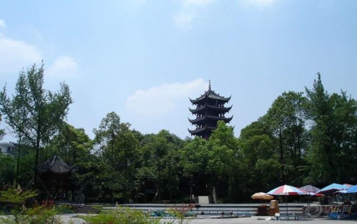棠湖公园图片