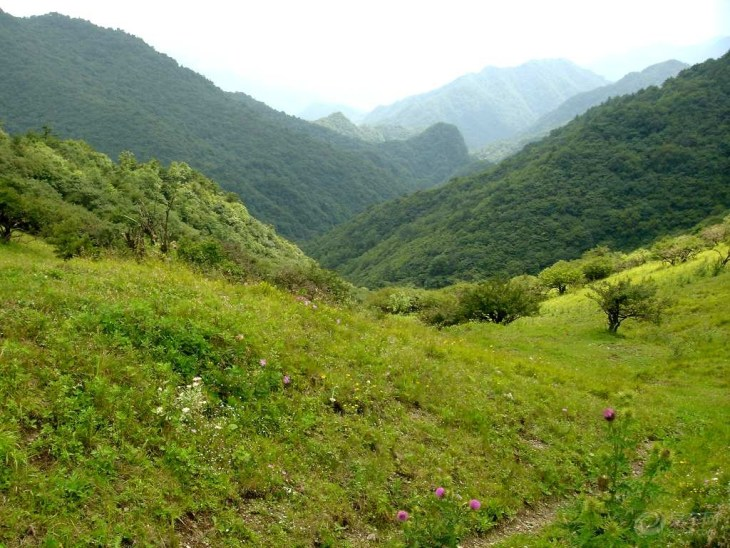 秦岭山脉面积广大,气势磅礴,蔚为壮观.