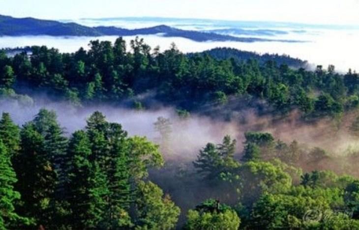 云南深山奇石风景图片