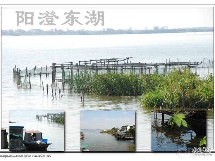 莲花岛东湖