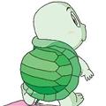 狂奔的乌龟