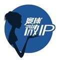 寰球微IP