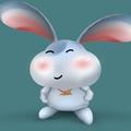 月光下的兔子