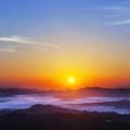 夏天的朝阳