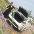 青葙Coc